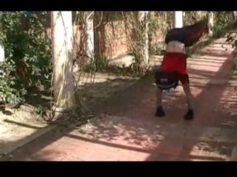 Dean Alexandrou - Spring 2004 showreel