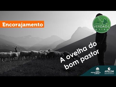 A ovelha do bom pastor
