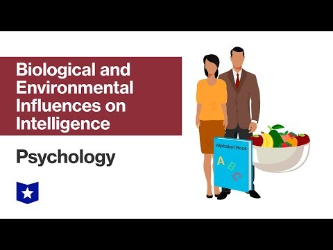 Biological and Environmental Influences on Intelligence | Psychology
