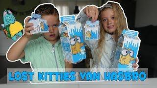 LOST KITTIES (NIEUW SPEELGOED) !! - Broer en Zus TV VLOG #197