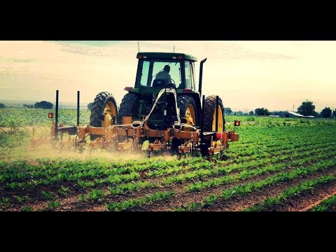 Property Rights, Agriculture, and Government