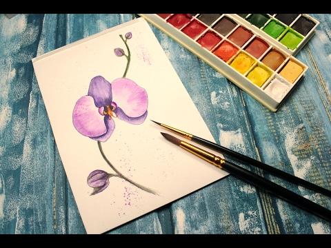 Как рисуются орхидеи