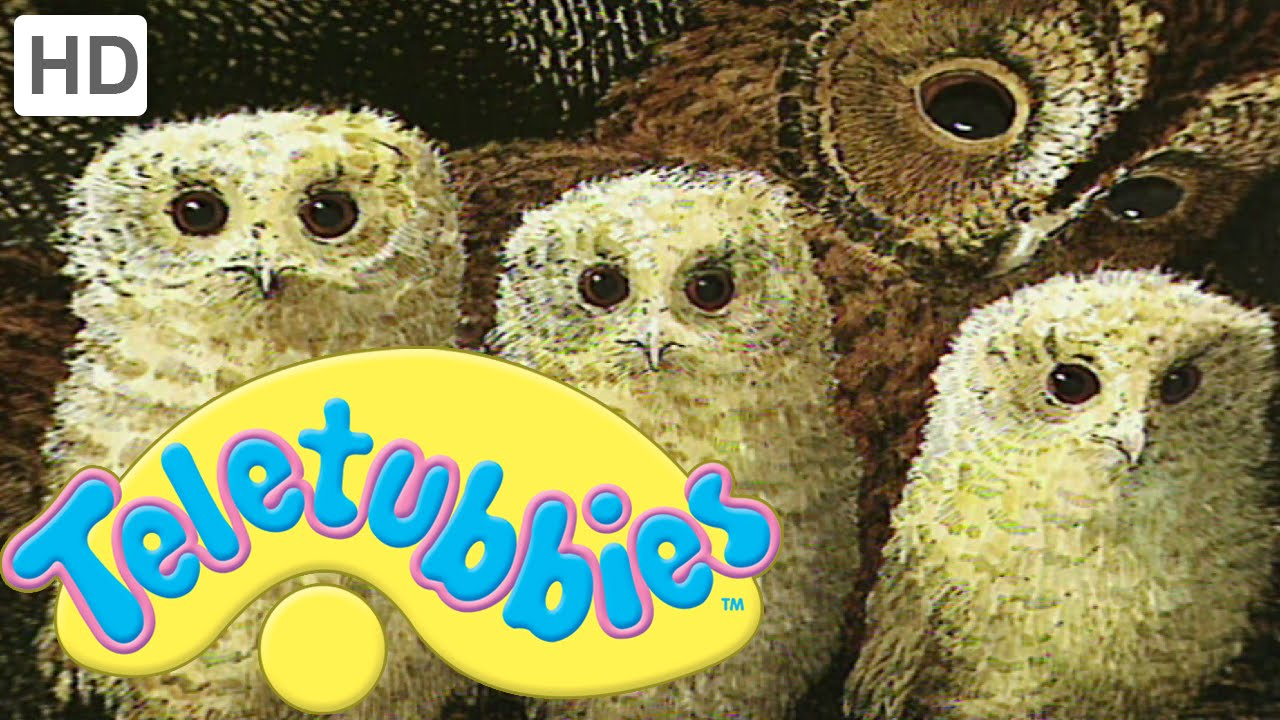 Teletubbies Owl Babies Full Episode Youtube