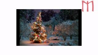 видео Как появился обычай ставить на Новый год елку?