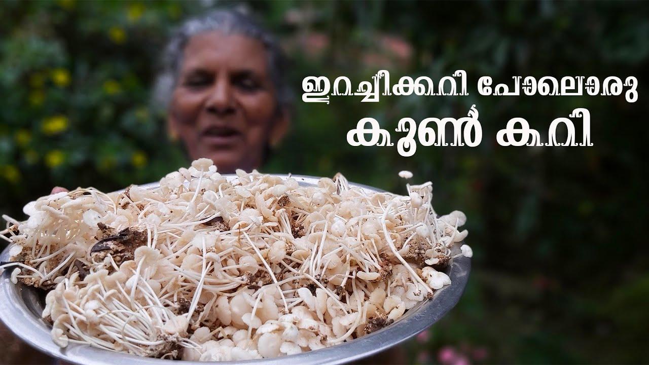 അരി കൂൺ  ഇങ്ങനെയൊന്നു കറി വെച്ച് നോക്കണം. ഒടുക്കത്തെ രുചിയാന്നേ 😋| Mushroom Curry| Annammachedathi 😍