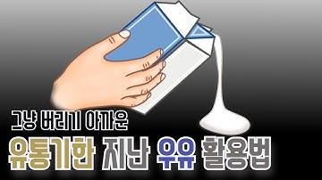 그냥 버리기 아까운 유통기한 지난 우유 활용법 6가지 | 알면 좋은 정보