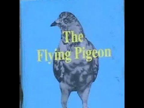 Taimur Khan Introduces 'The Flying Pigeon' Written By Ikhalq Ahmad Khan Travel Video