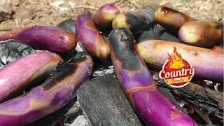 Roasted Brinjal Recipe || Special