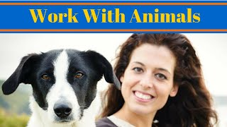 Work With Animals - Become A Dog Trainer