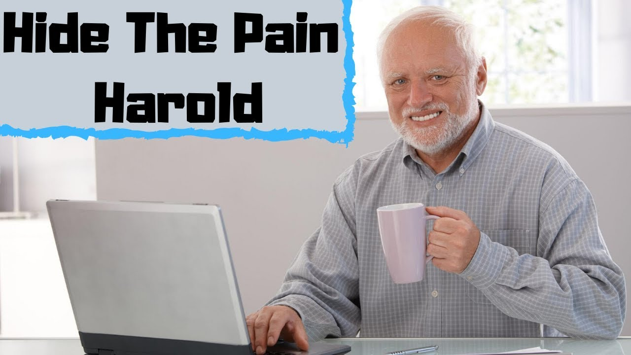 Hide The Pain Harold Meme Journal To Write In 110 Numbered