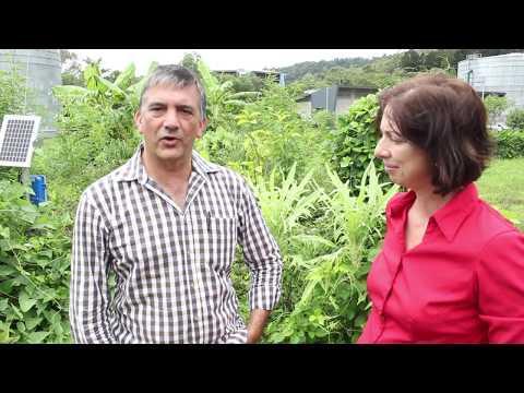 NESP TWQ Project 3.1.2 James Cook University grower tour
