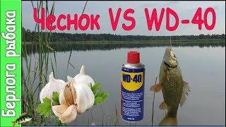 WD40 VS Часник на карася, що краще ? Покращують клювання на риболовлі?