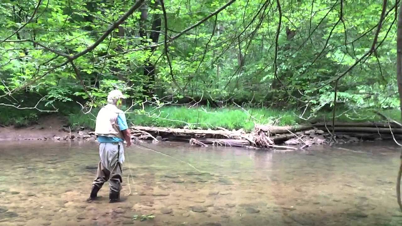 Fly fishing on the loyalhanna ligonier pa in slomo with for Pa out of state fishing license
