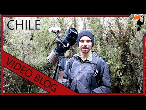 Video Blog - 3 Weeks In Chile And Patagonia