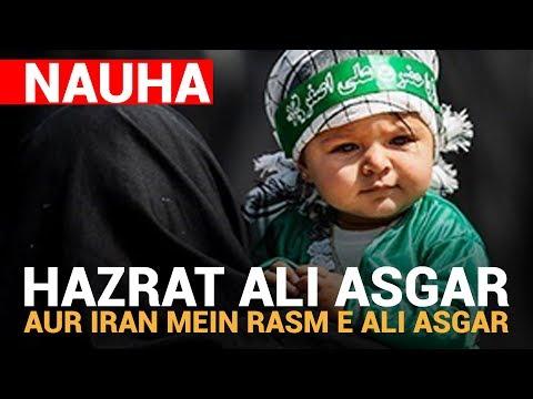 Hazrat Ali Asgar, Allegiance to Imam Mahdi atfs