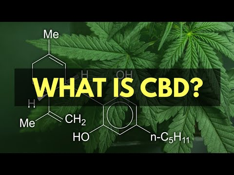 What is CBD? (The Effects & Benefits of Cannabidiol)