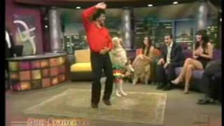 El Baile del Perrito