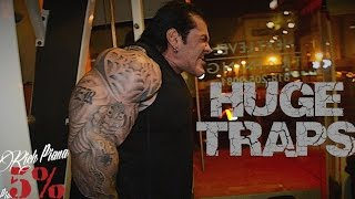 Video SHRUGS BEHIND THE BACK- HUGE TRAPS - Rich Piana download MP3, 3GP, MP4, WEBM, AVI, FLV Juni 2018