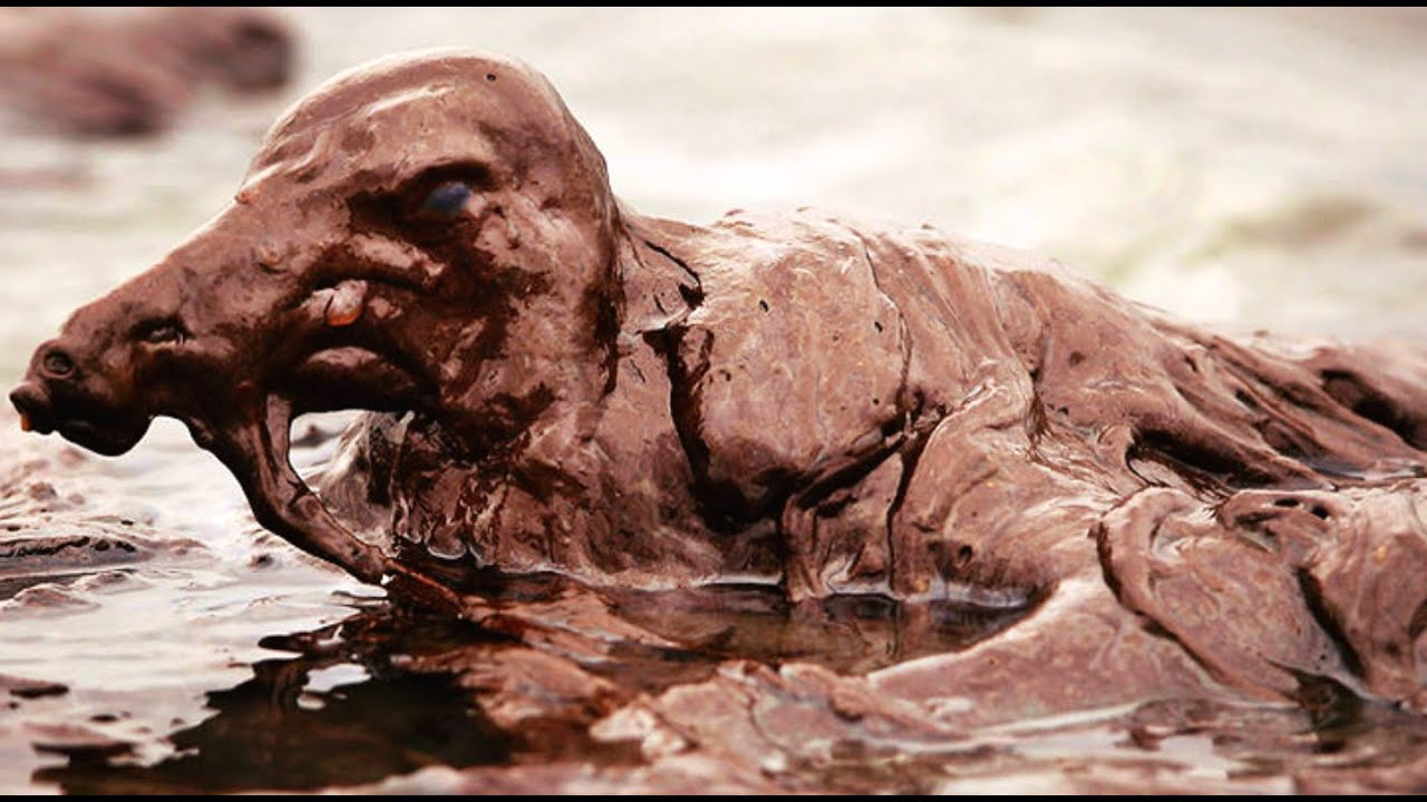 oil spills effect on wildlife essay Oil spills' effects on human life oil spills may occur all around us  the negative economic impact is a major effect of oil spill pollution.