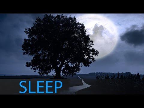 6 Hour Sleeping Music: Relaxing Music, Sleep Music, Deep Sleep, Relaxation Music, Insomnia ☯382