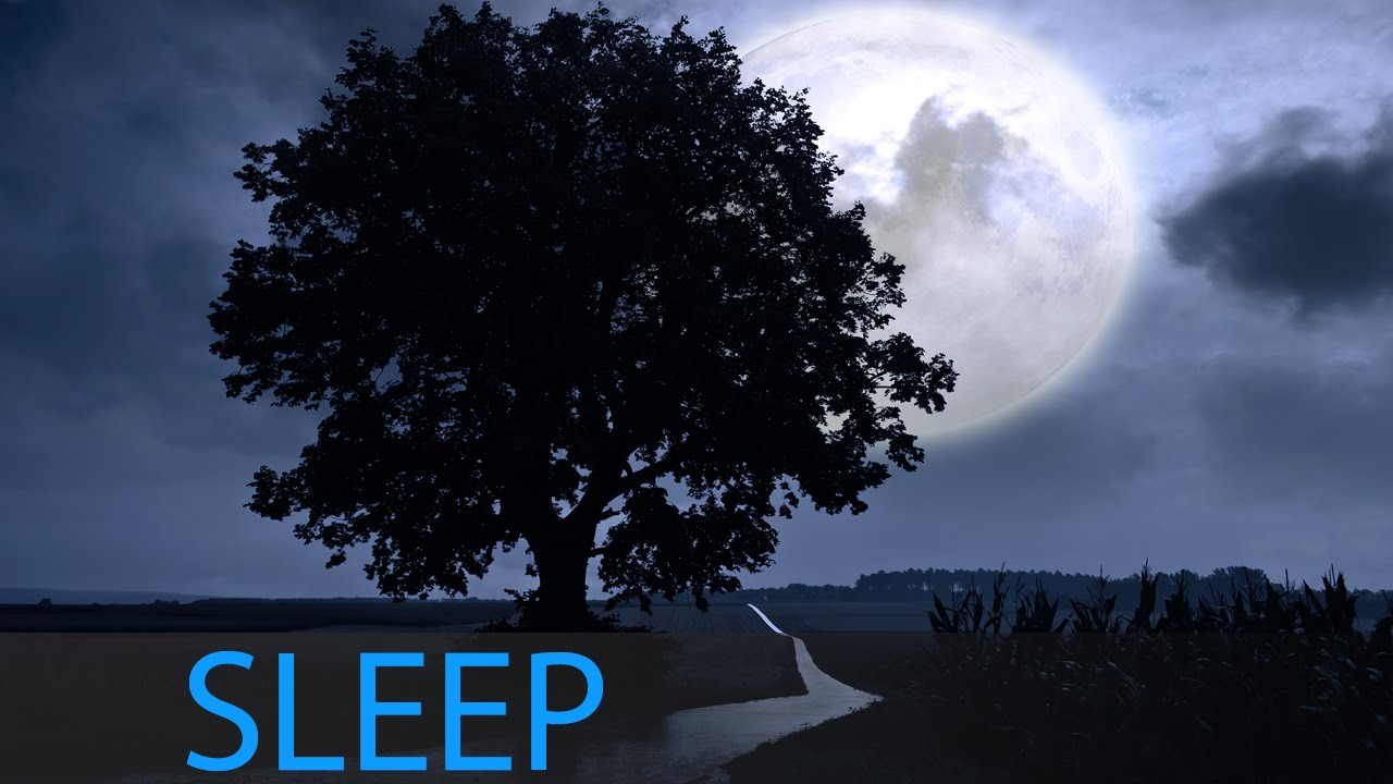 Relaxing Sleep Music: Deep Sleep, Fall Asleep, Sleeping Music, Calm Music,  Sleep Meditation, ☯382