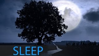 6 Hour Sleep Music: Calming Music, Sleep Song, Delta Waves, Deep Sleep ☯382