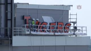 """TIGERS"" lettering Time Lapse"