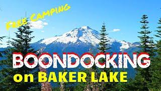 Free Camping Along Baĸer Lake, WA - Part 1