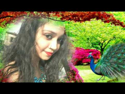 Sanjay Kumar dj