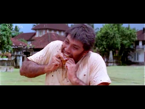 Tamil Super Hit movie comedy amaithi padai comedy ammavasai m l a comedy