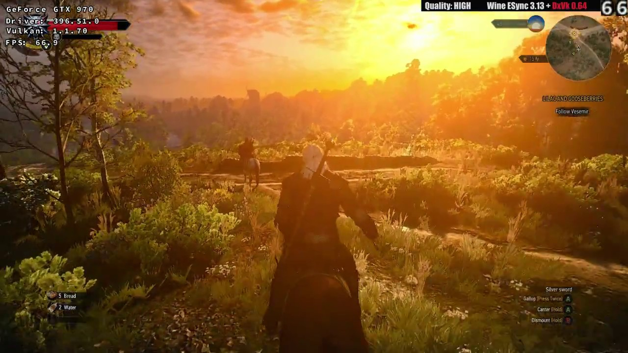 Wine Esync 3 13 + DxVk 0 64 - Witcher 3 HIGH Quality - meet the Griffin -  Linux 720p