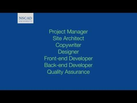 DSGN2510 Video 22: The Web Development Team