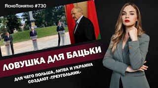 Ловушка для Бацьки Для чего Польша Литва и Украина создают треугольник 730 by Олеся Медведева