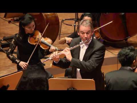 Mozart - Flute concerto No 1 G major KV 313 - Felix Reimann