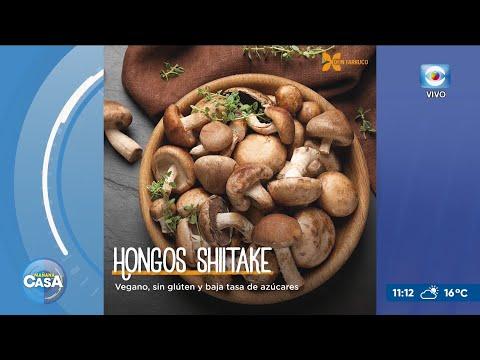 Hongo gourmet Shiitake en los Cerrillos