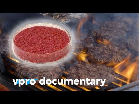 How clean meat will change the food industry - Docu