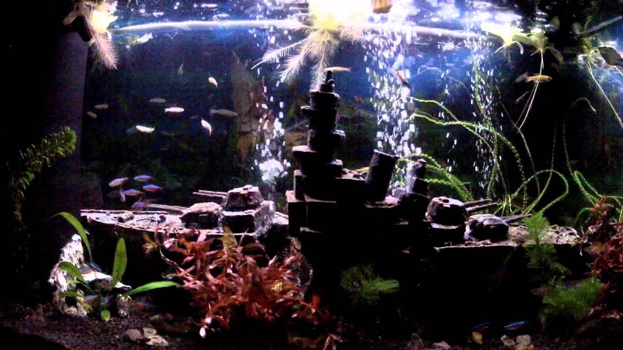 120 liter aquarium led morgend mmerung youtube. Black Bedroom Furniture Sets. Home Design Ideas