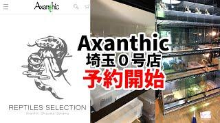 爬虫類ショップAxanthic【HP公開】