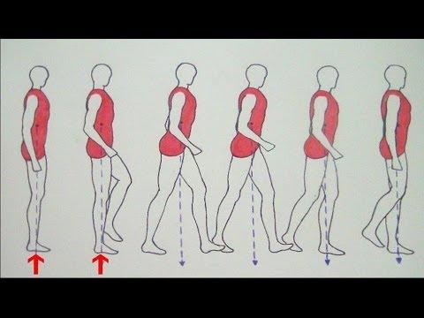 cÓmo-dibujar-cuerpos-en-movimiento:-gente-caminando