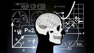 【科學史沙龍】大腦中的計算機─從認知神經科學談數學學習│張葶葶 2017.10.22 PART-2/3