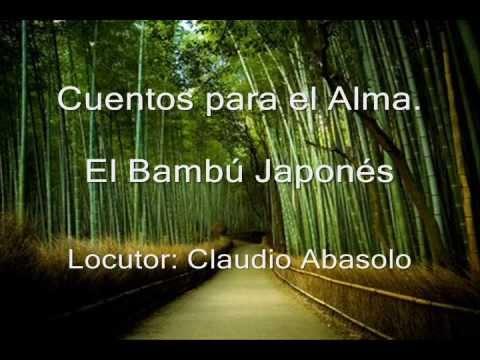 El bamb japon s cuentos para el alma youtube - Como se planta el bambu ...