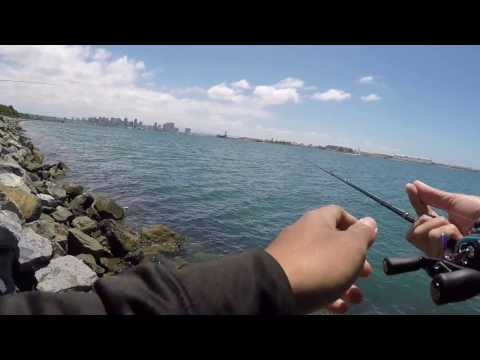 Quick Harbor Island Session