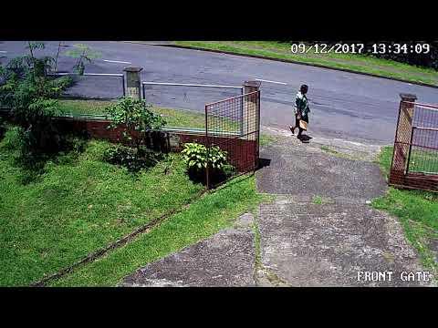 Drunkard Terroriser Suva Fiji 091217 1 32pm