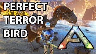 Terror Bird Perfect Tame Mate Boosted Pair Ark Survival Evolved S1 Ep