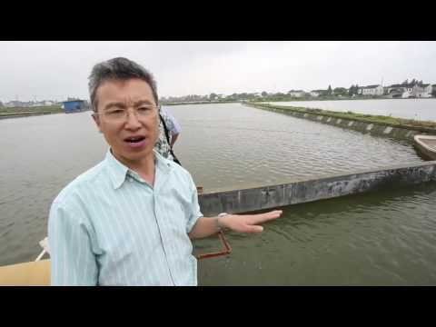 Proyecto sistema de oxigenaci n de estanques de peces doovi for Como oxigenar el agua de un estanque sin electricidad