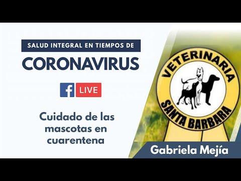 Cuidado de las mascotas en cuarentena junto a Gabriela Mejía