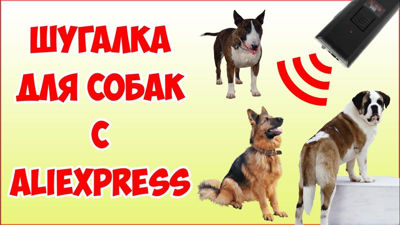 обзор отпугиватель собак ультразвуковой
