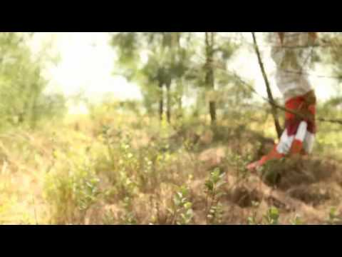 Geisha Pilihan Hatiku(VideoClip)