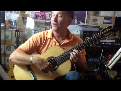 Detail for a Se Guitar Lesso