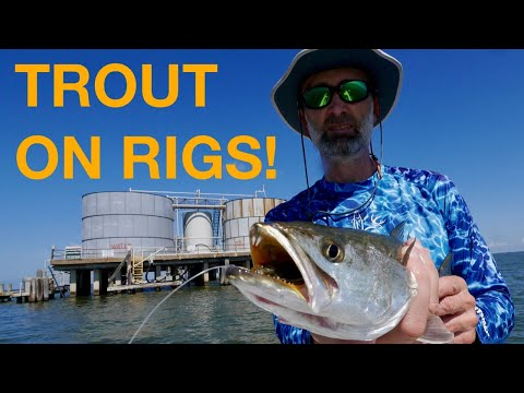 Don't Overlook Rigs when Fishing for Summertime Trout